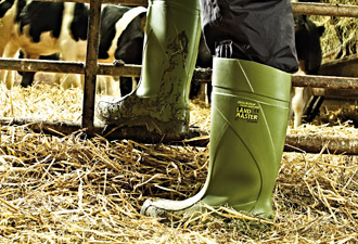 Wellingtons - Clothing and Footwear